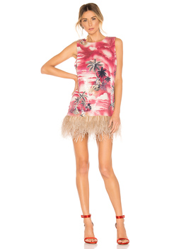 Night Shift Ostrich Feathers Dress by Le Superbe