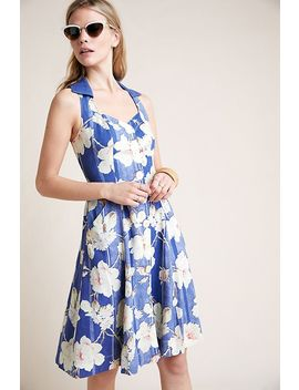 Camellia Collared Dress by Anthropologie