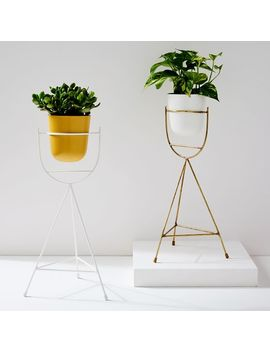 Portico Standing Planters   Tripod by West Elm