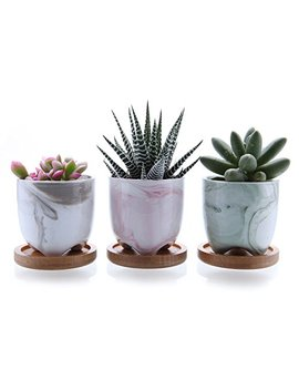 "T4 U 2.25"" Ice Cream Serial Modern Sucuulent Cactus Plant Pots Flower Pots Planters Containers Window Boxes Full Colors With Bamboo Trays by T4 U"