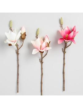Faux Magnolia Stem Set Of 3 by World Market