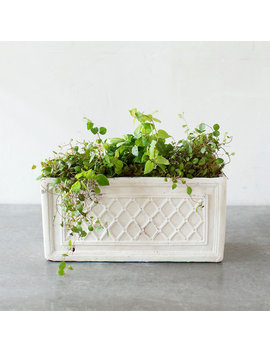 Lattice Terracotta Trough by Terrain