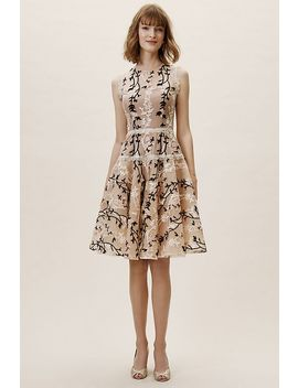 Cloe Dress by Anthropologie