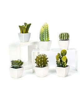 Nattol Artificial Mini Succulent & Cactus Plants In White Cube Shaped Pots, Set Of 6 by Nattol