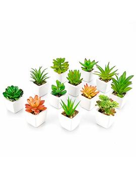Woodword Fake Succulent Plants In Pot Mini Artificial Plants Potted Faux Succulents For Home Office Cactus Decor, Set Of 12 by Woodword