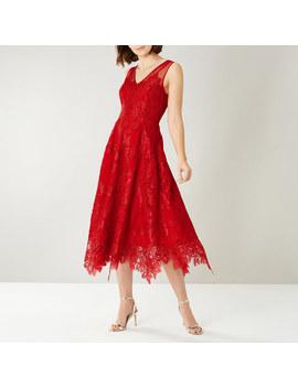 Flori Lace Dress by Coast