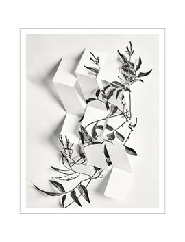 "Art Print Arrangement 2 11"" X 14"" by Permanent Press Editions"