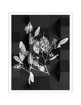 "Art Print Arrangement 1 11"" X 14"" by Permanent Press Editions"