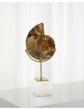 John Richard Collection Standing Ammonite, Small And Matching Items by John Richard Collection