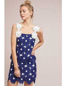 Daisy Lace Mini Skirt by Hutch