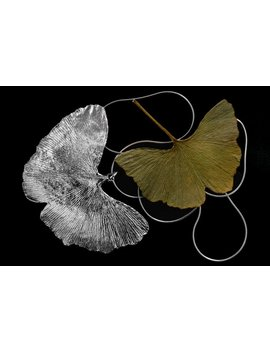 Real Natural Ginkgo Leaf Dipped In Silver Pendant. Silver Dipped Leaf Pendant. Ginkgo Leaf Statement Necklace. Fashion Accessory by Etsy