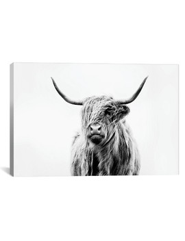 Portrait Of A Highland Cow By Dorit Fuhg Canvas Print 18 X 26   I Canvas by I Canvas