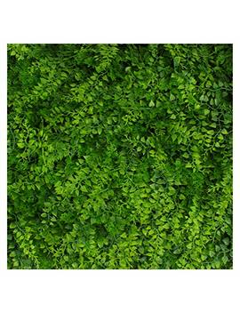Artificial Hedge   Outdoor Artificial Plant   Great Fern And Ivy Substitute   Sound Diffuser Privacy Fence Hedge   Topiary Greenery Panels (12, Juniper) by 3rd Street Inn