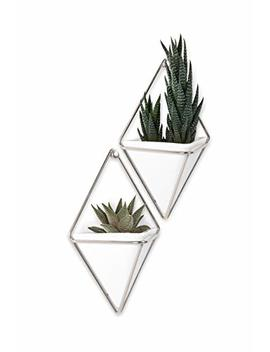 Umbra Trigg Hanging Vase & Geometric Wall Decor Container, White/Nickel, Set Of 2 Planter Small by Umbra