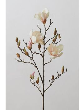 Faux Magnolia Spray by Anthropologie