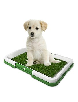 """Artificial Grass Bathroom Mat For Puppies And Small Pets  Portable Potty Trainer For Indoor And Outdoor Use By Petmaker  Puppy Essentials, 18.5"""" X 13"""" by Petmaker"""