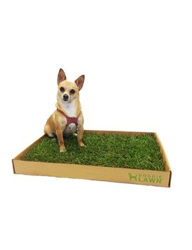 Doggie Lawn Disposable Dog Potty With Real Grass by Doggie Lawn