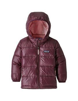 Hi Loft Down Sweater Hooded Jacket   Toddler Girls' by Patagonia
