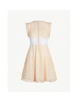 Kamel Sleeveless Embroidered Lace Dress by Sandro