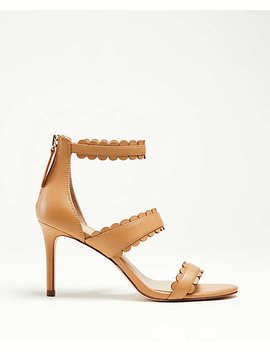 Raina Scalloped Leather Heeled Sandals by Ann Taylor