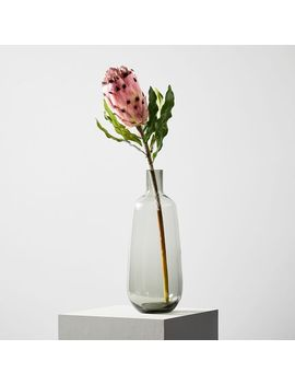 Artificial Plants   Protea by West Elm