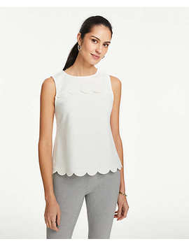 Petite Scalloped Shell by Ann Taylor