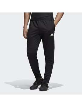 Tan Training Pants by Adidas