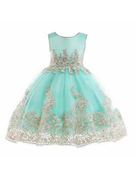 Jianlanptt Flower Girl Dresses Toddler Little/Big Girls Birthday Party Dress by Jianlanptt