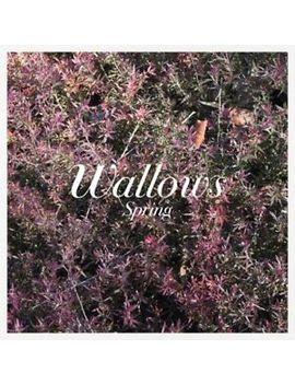 Spring   Wallows (Vinyl New) Explicit Version by Ebay Seller