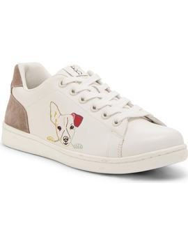 Chapanim2 Low Top Sneaker by Ed Ellen Degeneres