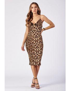 **Leopard Print Cami Midi Dress By Club L by Topshop