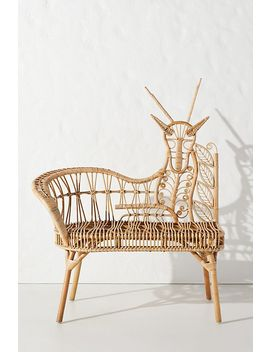 Springbok Rattan Bench, Left by Anthropologie