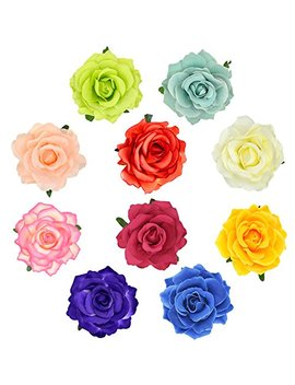 Dreshow 5 Pack Flower Brooch Head Ornament Bride Women Rose Flower Hair Accessories Wedding Hair Clip Flamenco Dancer by Dreshow