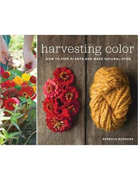Harvesting Color: How To Find Plants And Make Natural Dyes by Rebecca Burgess