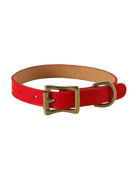 Personalized Small Dog Collar by Graphic Image