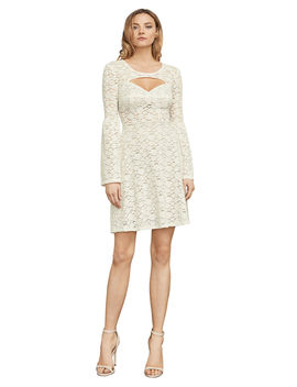 Medina Floral Lace A Line Dress by Bcbgmaxazria