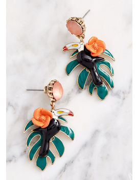 Tropical Option Toucan Earrings by Modcloth