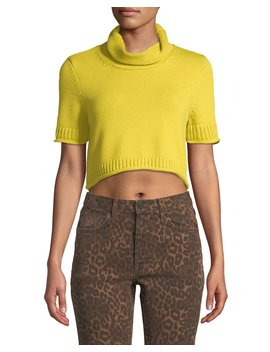 Cropped Turtleneck Short Sleeve Sweater by Alexanderwang.T