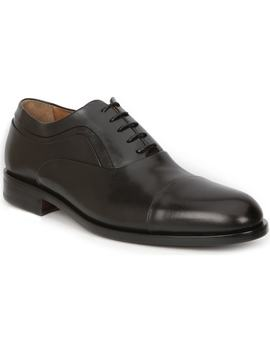 Sassiolo Cap Toe Oxford by Bruno Magli