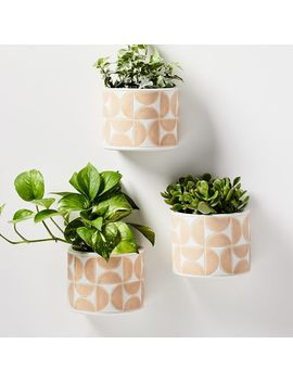 Terracotta Wallscape Planter by West Elm