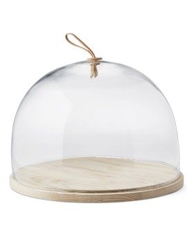 Cake Dome With Ash Base by Williams   Sonoma