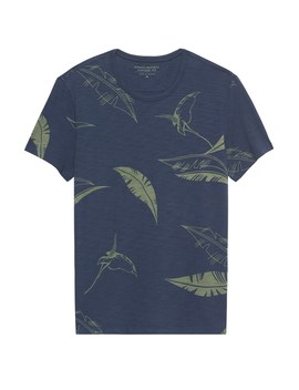 Leaf Graphic T Shirt by Banana Repbulic