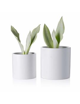 Greenaholics Plant Pots   5.9 + 4.7 Inch Matt Ceramic Planter With Drainage Hole For Flower, Cactus, Succulent Planting, Set Of 2, White by Greenaholics