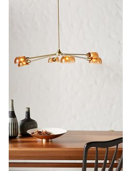 Cora Chandelier by Anthropologie