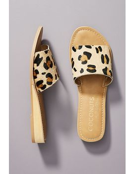 Coconuts By Matisse Sandal Slides by Matisse
