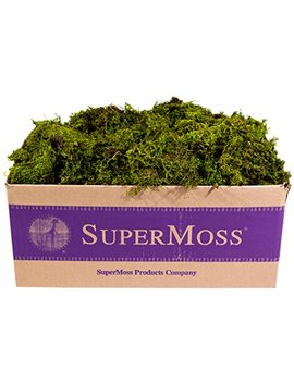 Super Moss 7 59834 22167 8 B00 I6 Ajd5 Y, Appx. 3 Lb Bulk Case Fresh Green by Super Moss