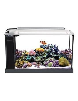 Fluval 10528 A1 Evo V Marine Aquarium Kit, 5 Gal by Fluval