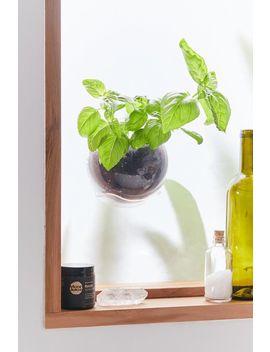 Urbz Window Planter Pod by Urbz
