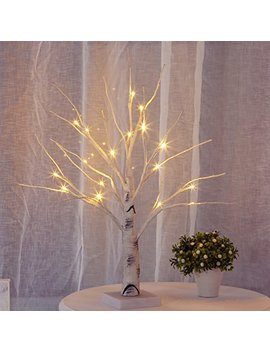 Bolylight Led Birch Money Tree Gift Holder Jewelry Holder Night Light Table Tree Lamp Centerpiece Great Decor For Home/Christmas/Party/Festival/Wedding, 1.5ft by Bolylight