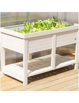 Elevated Planter by Wayfair